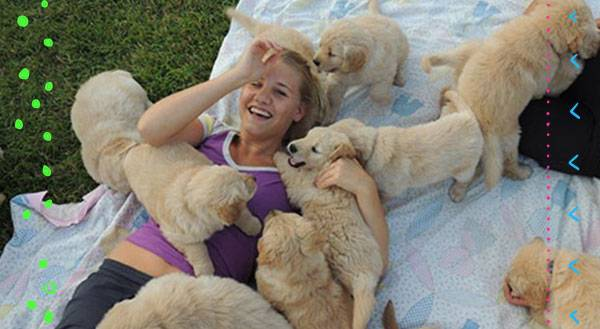 De-Stress With Cuteness at College Puppy Petting Stations