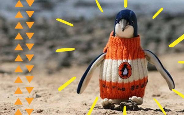 The Oldest (and Sweetest) Man Alive Knits Sweaters for Penguins