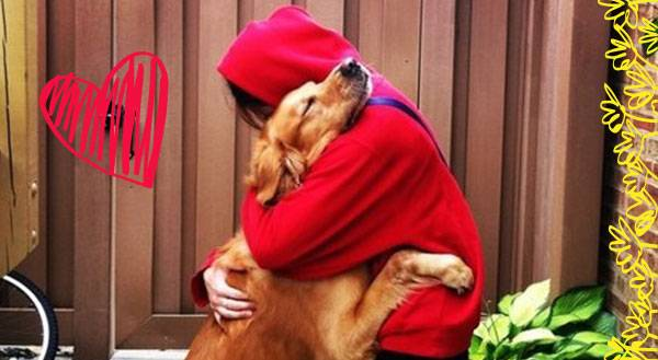 The 7 Stages Of Grief When You Leave Your Pet For College