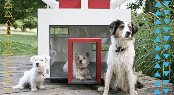 7 Dog Houses That Are Better Than Your Own Home
