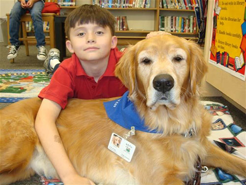 TherapyDogs